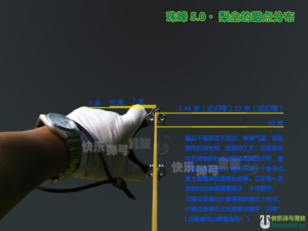 ... 斑鸠种类_斑鸠叶豆腐_减震吹50米下斑鸠 - 黑马素材网