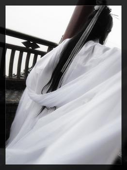 一个白衣女子的图片