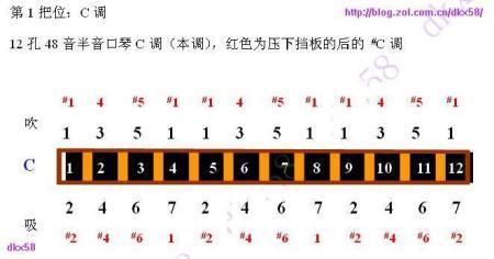 半音阶口琴分别为十孔,十二孔,十六孔三种,以十二孔的半音阶口琴最为图片