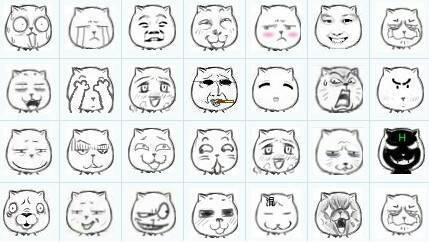 求猥琐猫图片,qq表情等吧!图片