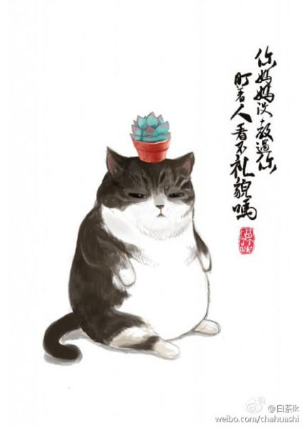 吾皇猫微信头像_吾皇万睡情侣头像_吾皇巴扎黑 头像 ...