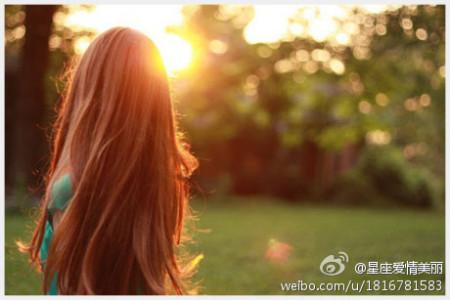 求一张图片 是在阳光下一个短发女生的背影,周围是有点像荒草的样子图片