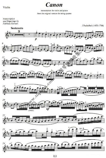 卡农小提琴加速版的五线谱图片