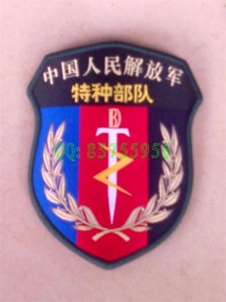 辣女兵 中戴的臂章是神马特种部队的 还是导演YY的图片