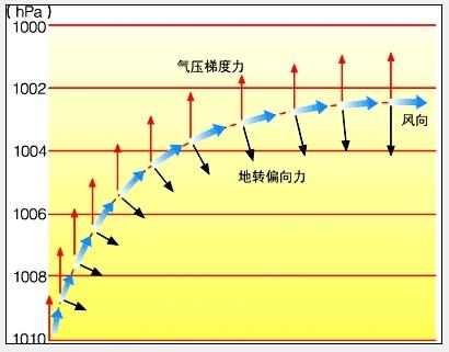 精彩回答 下载有礼  优质解答 就你的图而言: 1,风力w,气压梯度力a,地图片